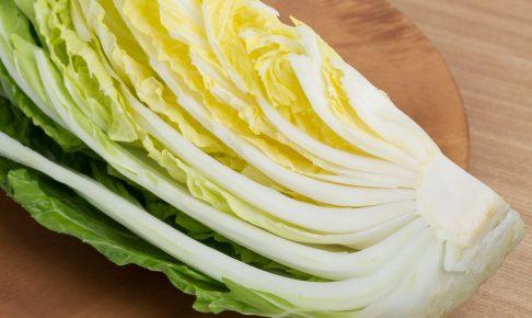 約2か月で収穫できる!栄養豊富な野菜「白菜」の育て方