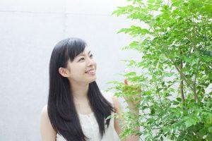 育て方が簡単!人気観葉植物「シマトネリコ」のお手入れ方法