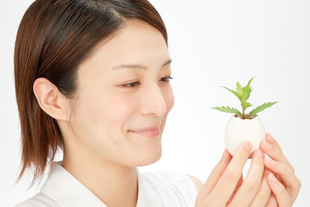 育て方が超簡単で初心者にもピッタリな観葉植物の選び方