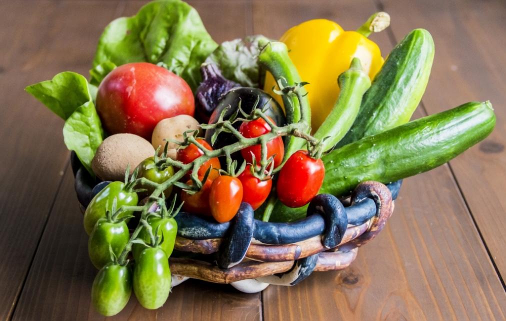 ガーデニング未経験でも大丈夫!初心者でも育てやすい野菜まとめ