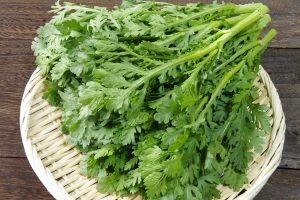 栄養豊富な春菊をおいしく食べるための選び方と保存方法